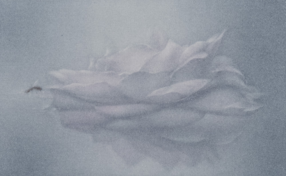 Mirage a collection of five mezzotints with original haiku poetry by Victor Ortiz