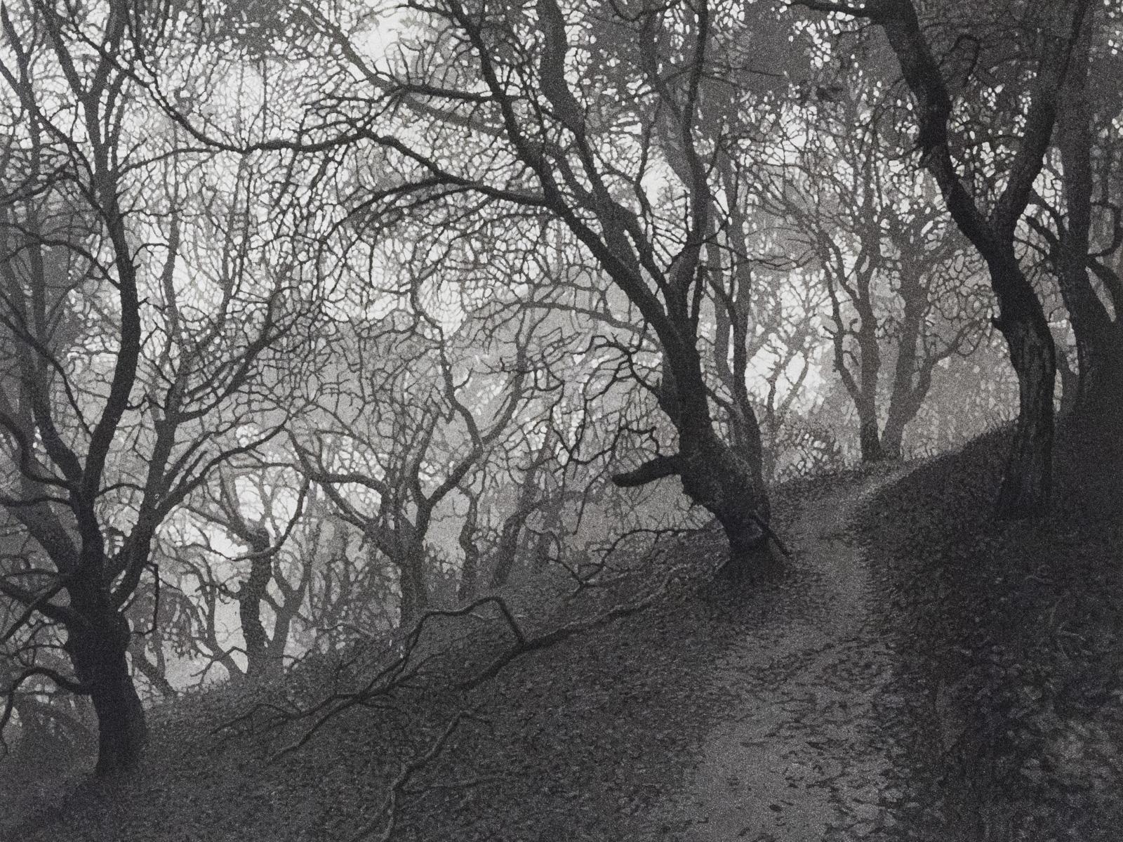 Oak Path, 1 plate edition