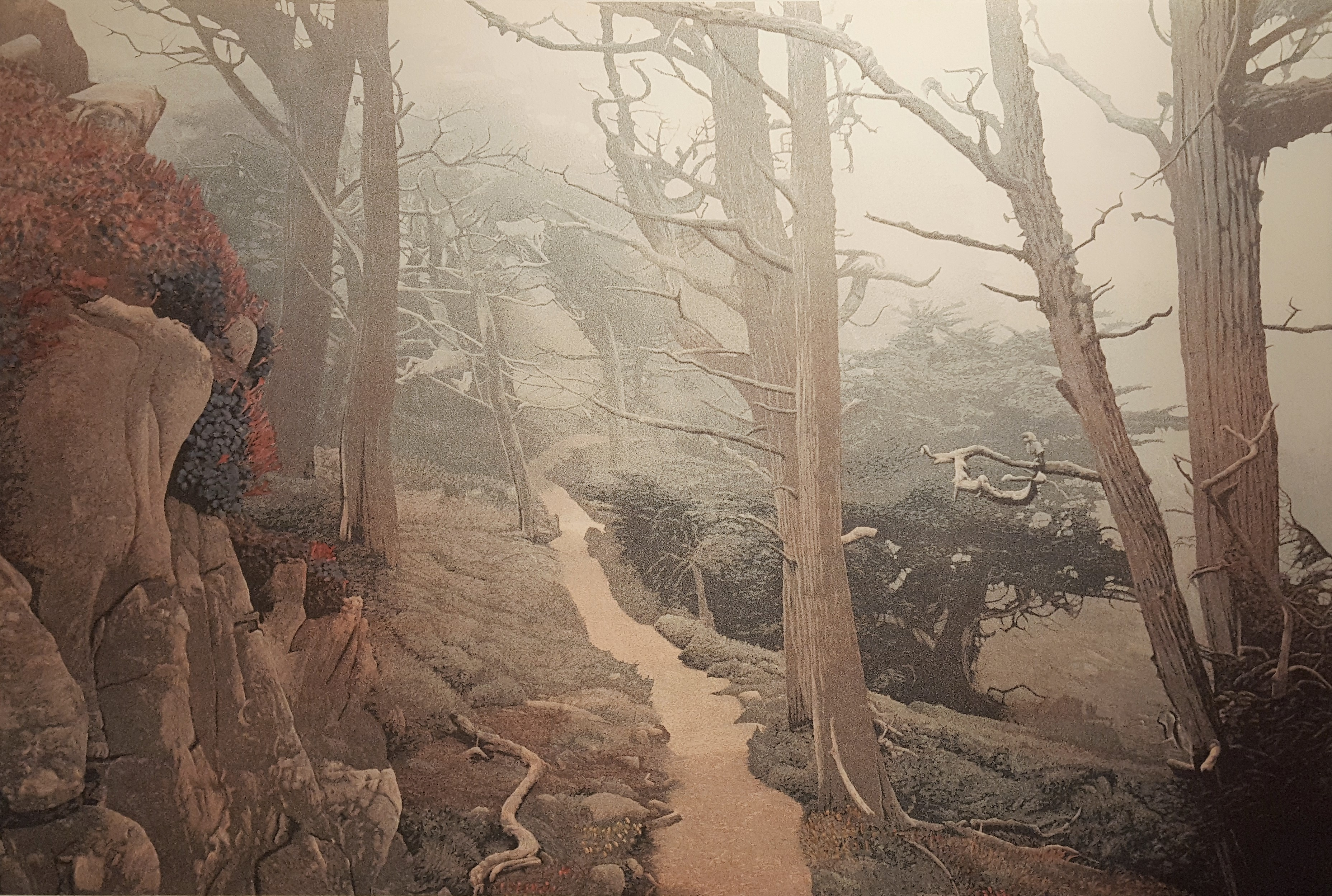 Cypress Path (1983) Hand-colored (one only)