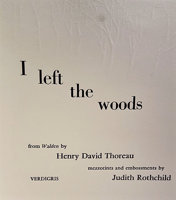 I Left the Woods - Judith Rothchild