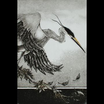 """Etching by Beki Killorin edition of 200 Image size: 6"""" x 9"""" Price: $220.00"""