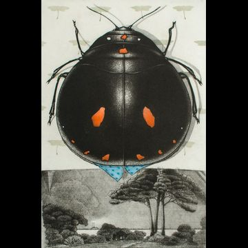 Petit insect et son habitat