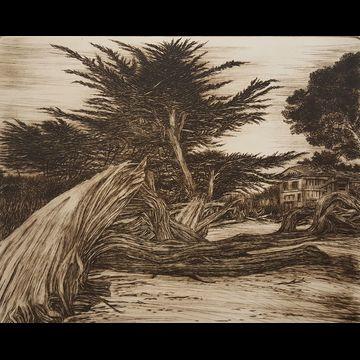 Fallen Cypress, Carmel Beach