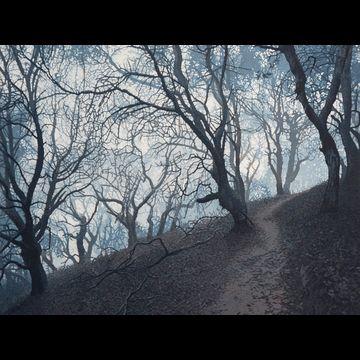 Oak Path, 2 plate edition