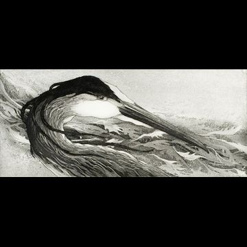 """Etching by Beki Killorin edition of 350 Image size: 8"""" x 3 1/2"""" Price: $120.00"""