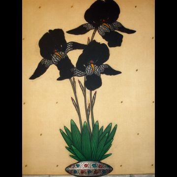 Iris Noir