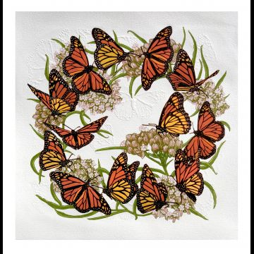 Twelve Monarchs and a Viceroy